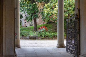 museo storia naturale4. Raffaello e Alessandro Faraggiana